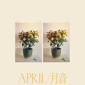 Emmy The Great: April / 月音 (Bella Union)