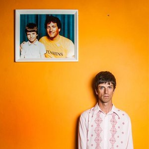 Euros Childs - Situation Comedy (National Elf)