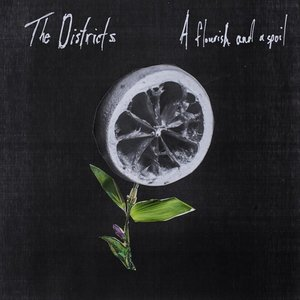 The Districts - A Flourish and a Spoil (Fat Possum)