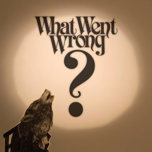 Ivan Campo - What Went Wrong (self-release)
